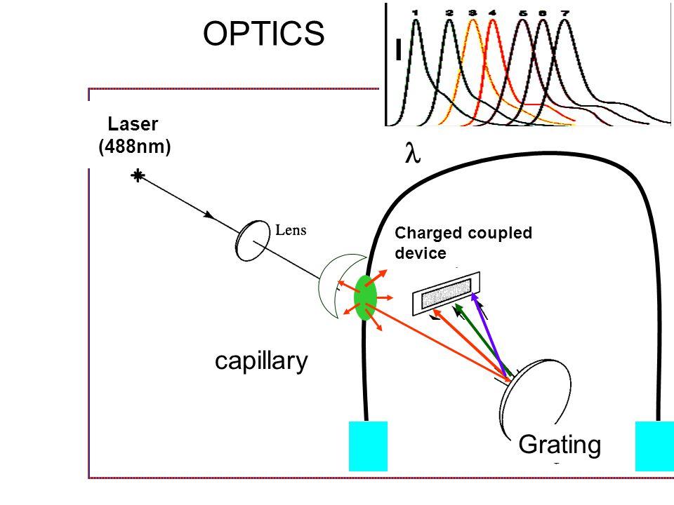 ABI 3100 16-capillary array ABI 310 single capillary Capillary Electrophoresis Instrumentation