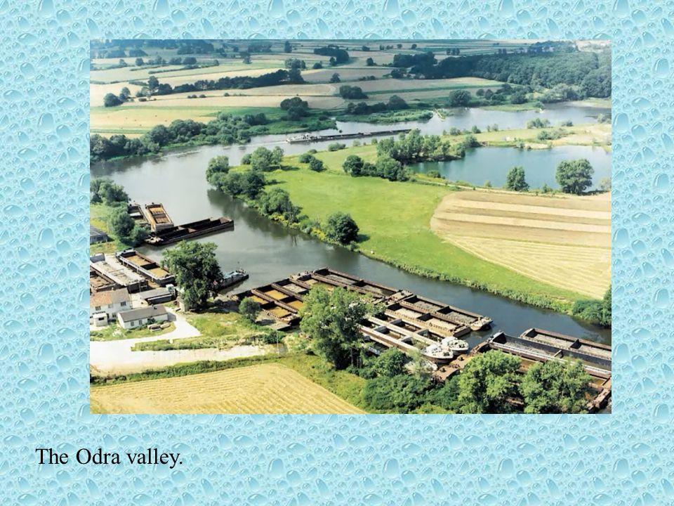 Main rivers RiverTotal length Length in Poland Total areaArea in Poland Wisła1047 km 194,3 thousand km 2 168,6 thousand km 2 Odra854 km742 km119,1 tho