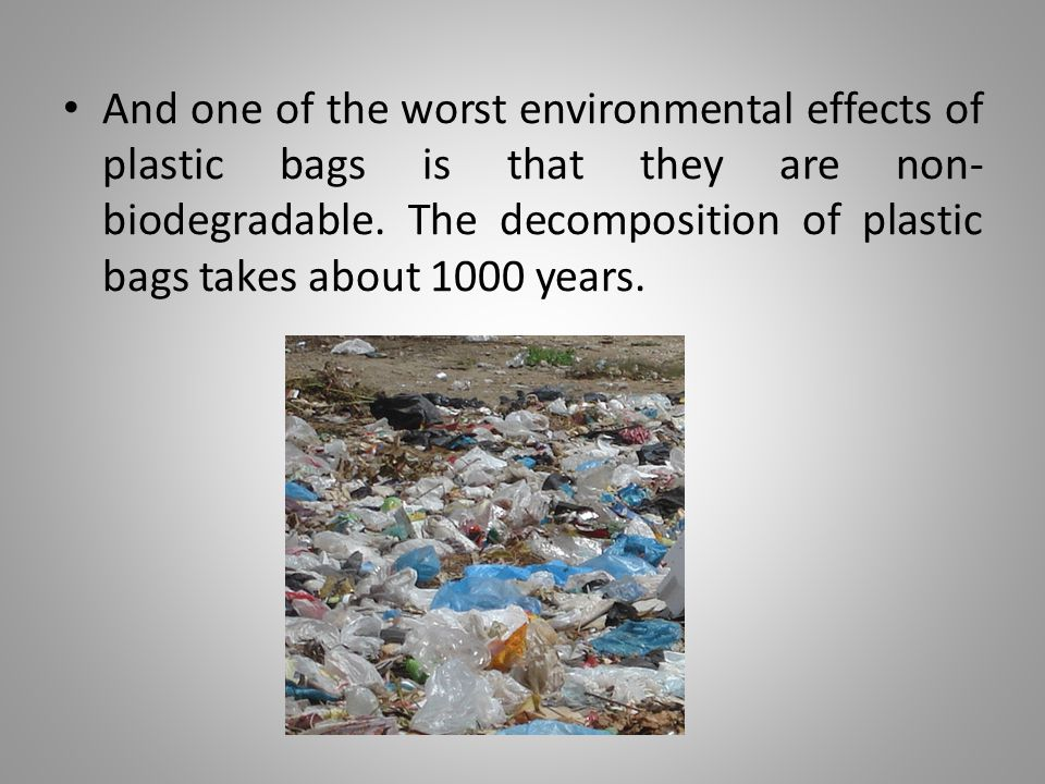 Many animals ingest plastic bags, mistaking them for food, and therefore die.