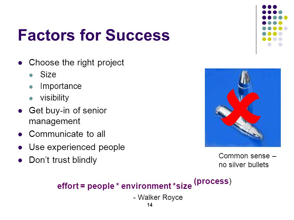 14 Factors for Success Choose the right project Size Importance visibility Get buy-in of senior management Communicate to all Use experienced people Don't trust blindly effort = people * environment *size (process) - Walker Royce  Common sense – no silver bullets