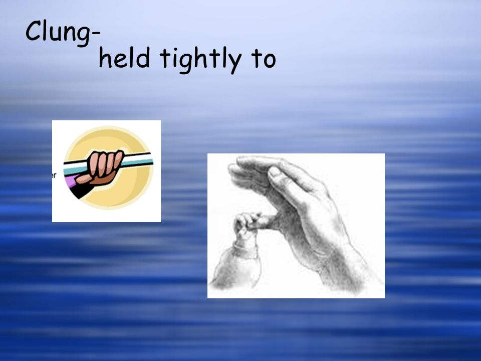 held tightly to Clung-