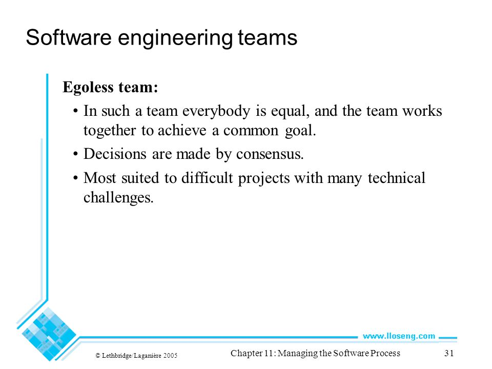 © Lethbridge/Laganière 2005 Chapter 11: Managing the Software Process31 Software engineering teams Egoless team: In such a team everybody is equal, and the team works together to achieve a common goal.