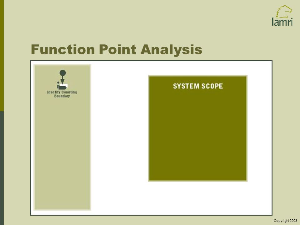 Copyright 2003 Function Point Analysis