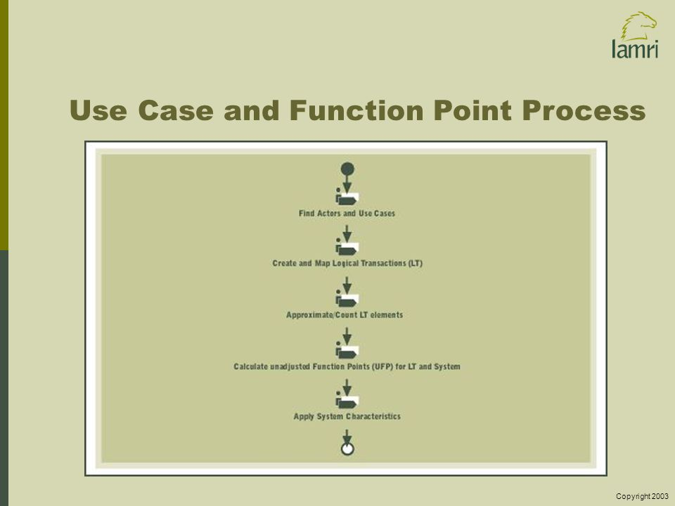 Copyright 2003 Use Case and Function Point Process
