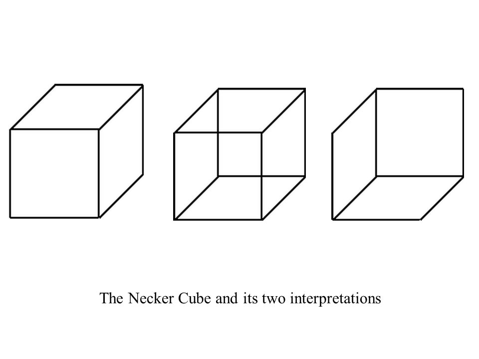 The Necker Cube and its two interpretations