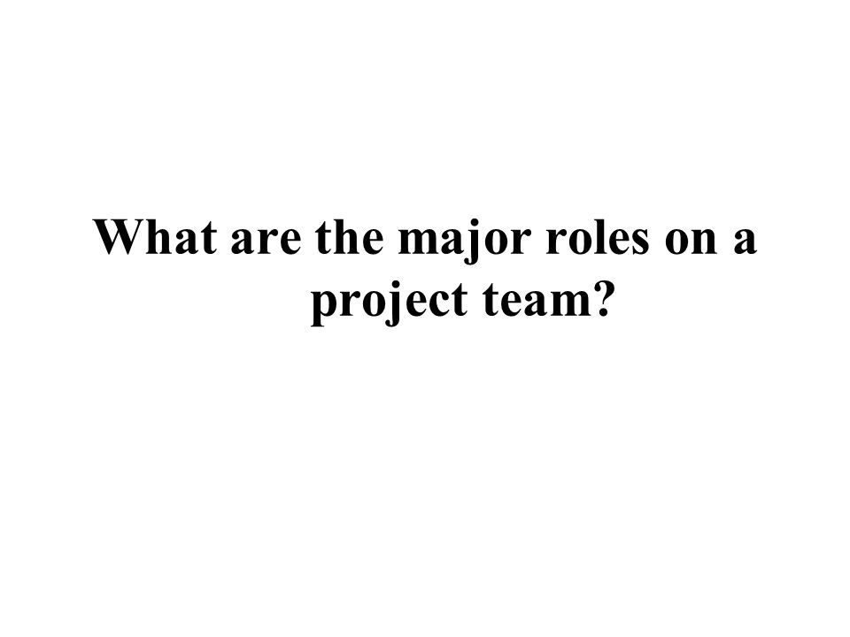 What are the major roles on a project team?