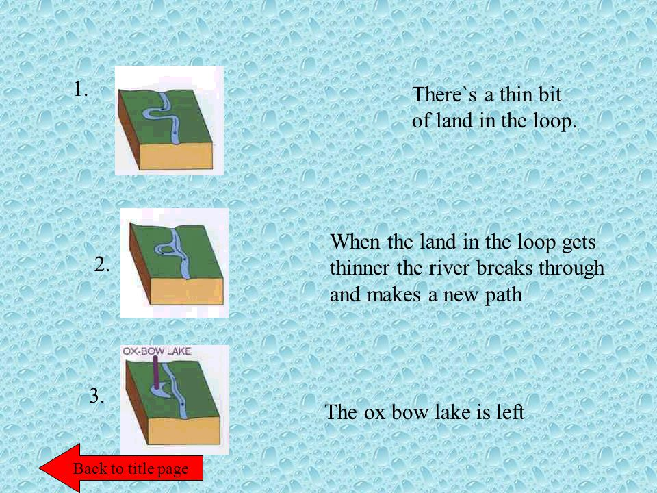 There`s a thin bit of land in the loop. 1. 2. 3. When the land in the loop gets thinner the river breaks through and makes a new path The ox bow lake