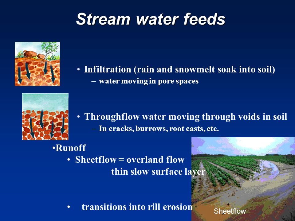 Stream water feeds Stream water feeds Infiltration (rain and snowmelt soak into soil) –water moving in pore spaces Throughflow water moving through voids in soil –In cracks, burrows, root casts, etc.