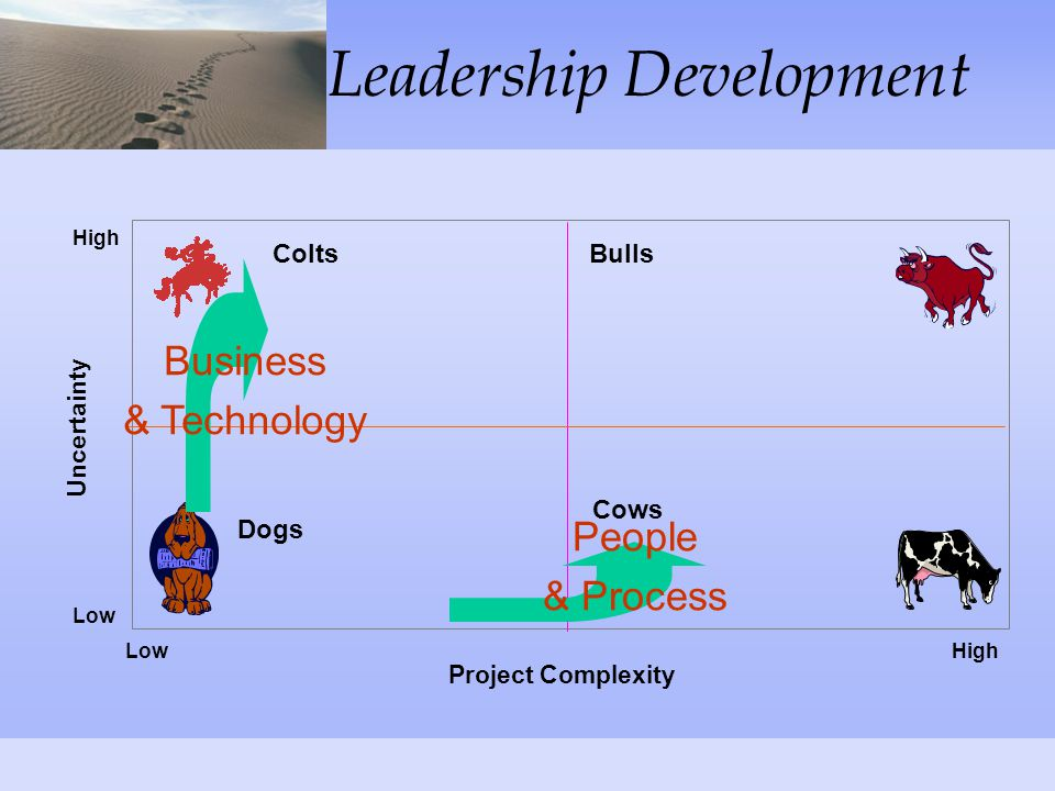 Leadership Development Process People Technology Business