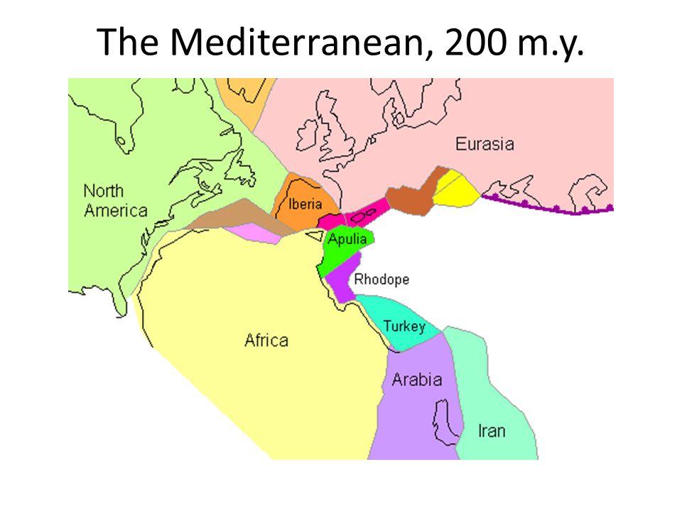 The Mediterranean, 200 m.y.