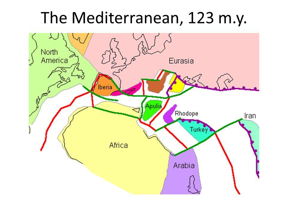 The Mediterranean, 123 m.y.