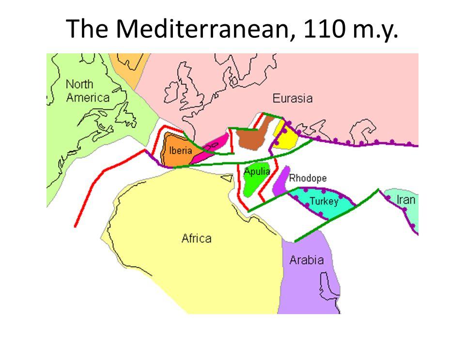 The Mediterranean, 110 m.y.