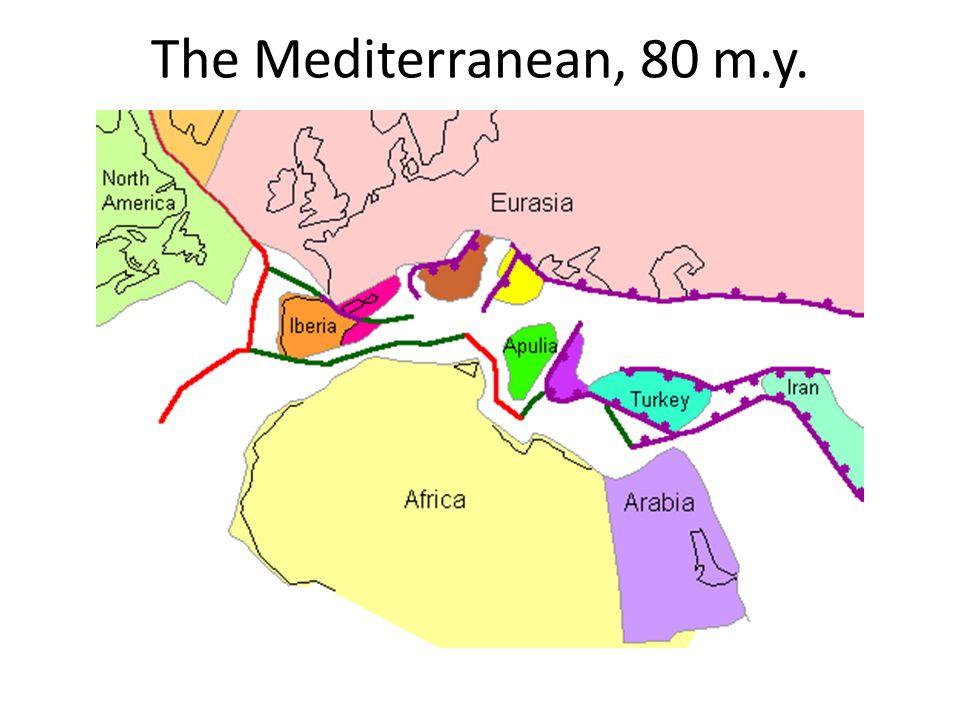 The Mediterranean, 80 m.y.