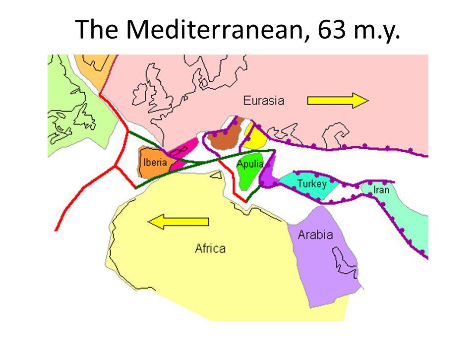 The Mediterranean, 63 m.y.