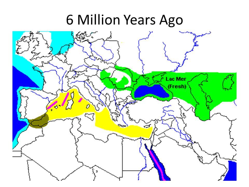 6 Million Years Ago