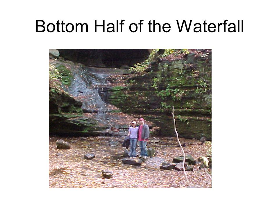 Bottom Half of the Waterfall