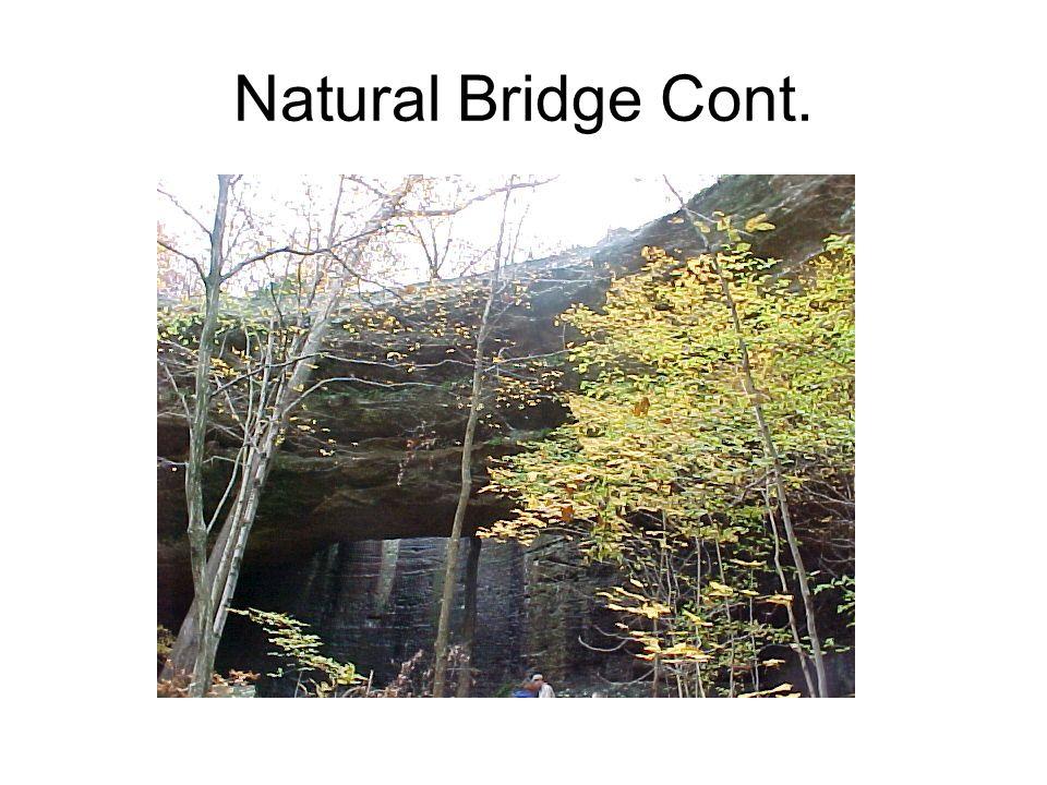 Natural Bridge Cont.
