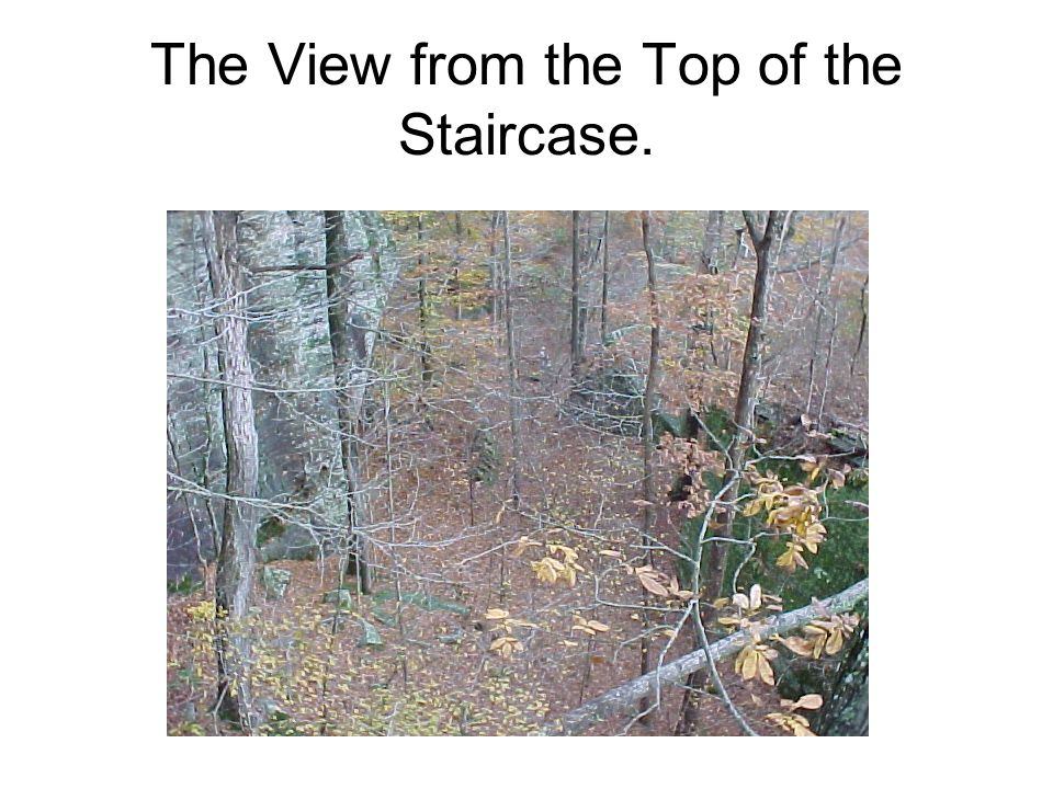 The View from the Top of the Staircase.