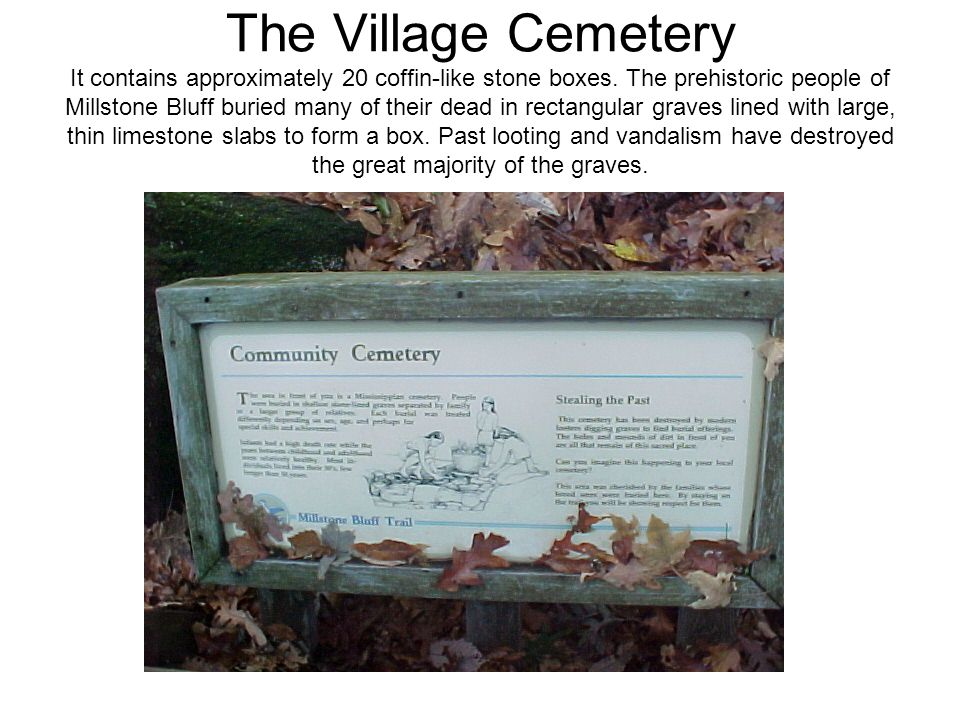 The Village Cemetery It contains approximately 20 coffin-like stone boxes.