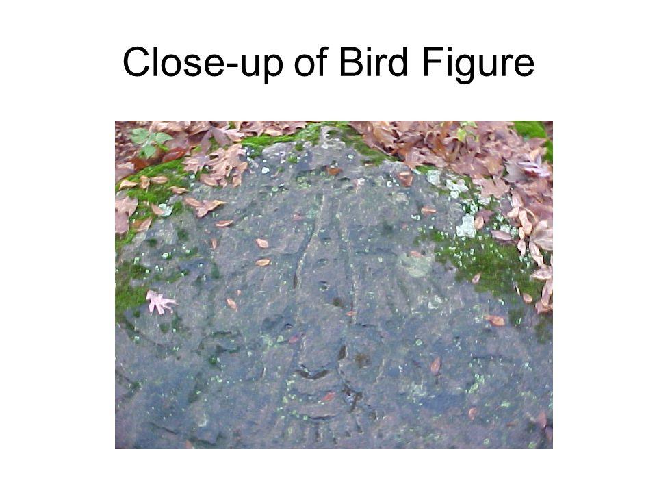 Close-up of Bird Figure