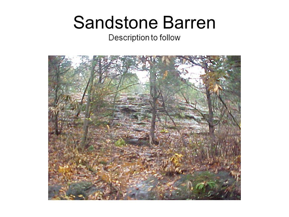 Sandstone Barren Description to follow