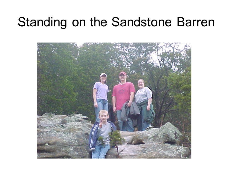 Standing on the Sandstone Barren
