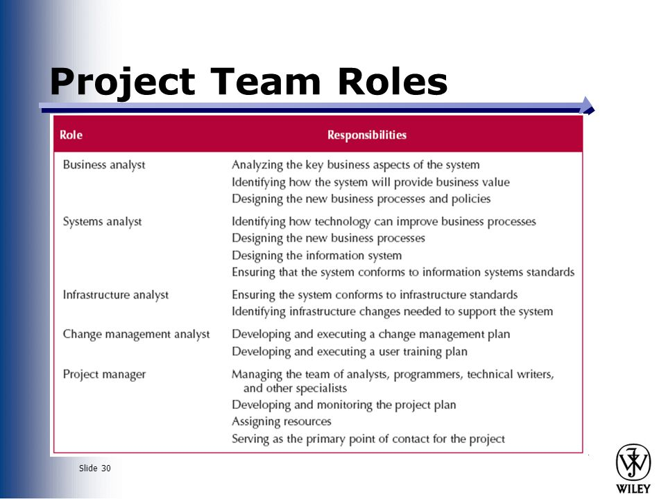 Slide 30 Project Team Roles