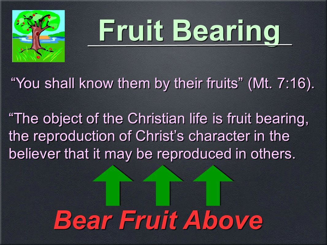 Fruit Bearing Bear Fruit Above You shall know them by their fruits (Mt.
