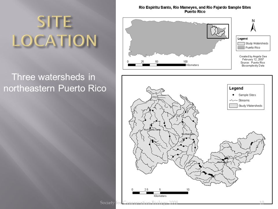 10 Three watersheds in northeastern Puerto Rico Society for Conservation Biology 2008