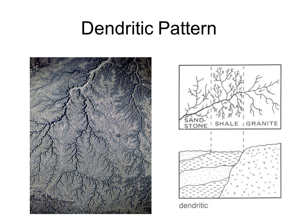 64 Dendritic Pattern