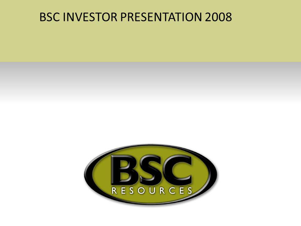 BSC INVESTOR PRESENTATION 2008