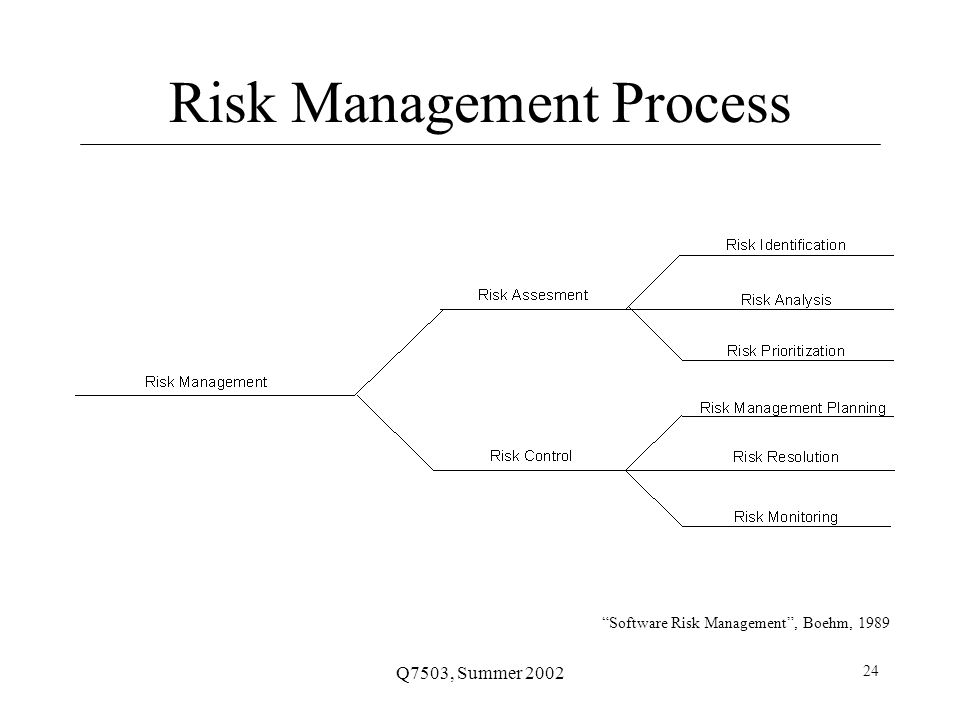 Q7503, Summer 2002 24 Risk Management Process Software Risk Management , Boehm, 1989