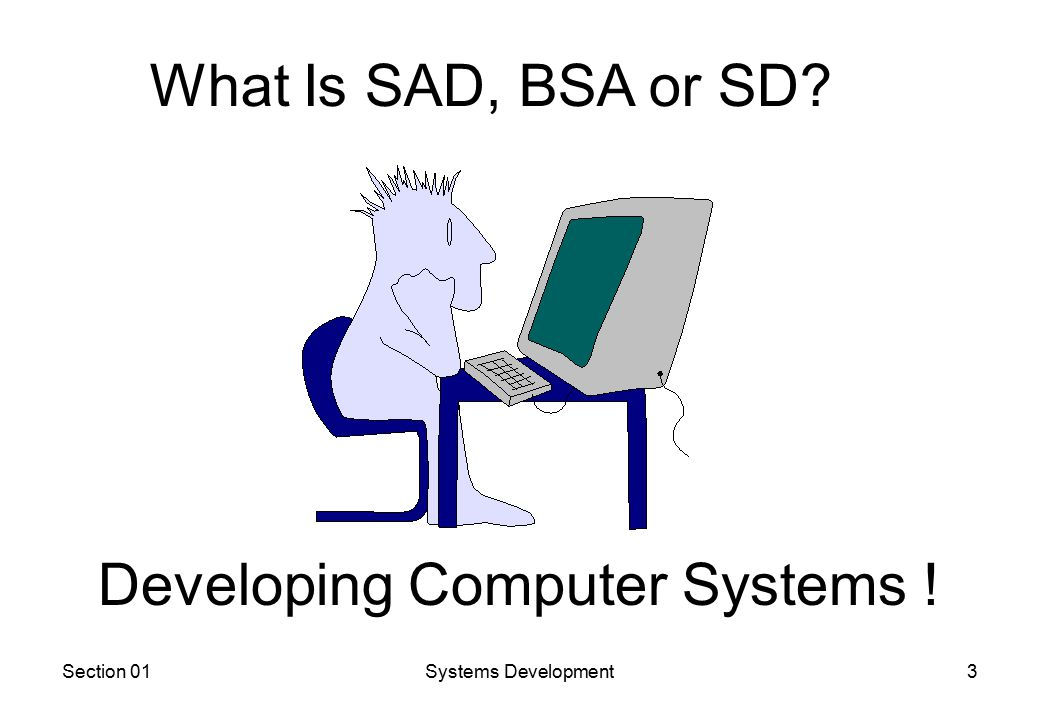 Section 01Systems Development3 What Is SAD, BSA or SD Developing Computer Systems !