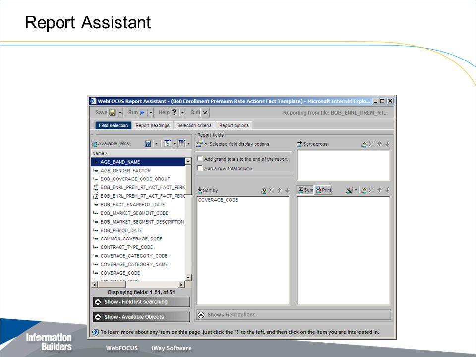 Report Assistant