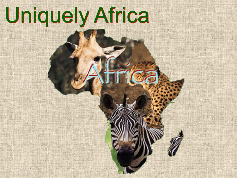 Uniquely Africa