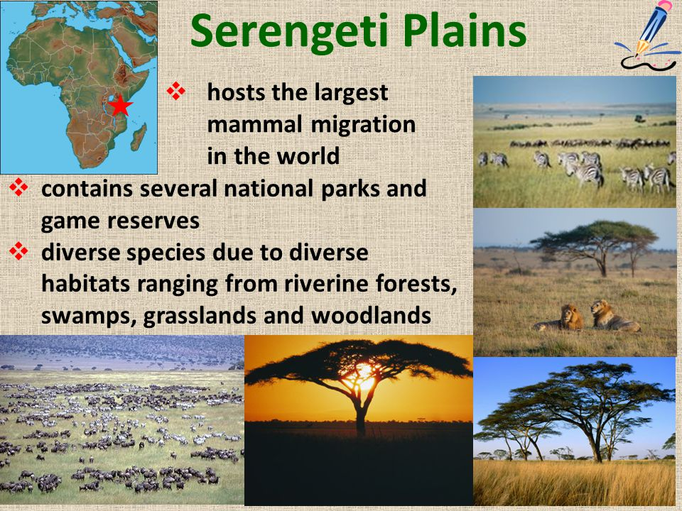 Serengeti Plains  hosts the largest mammal migration in the world  contains several national parks and game reserves  diverse species due to divers