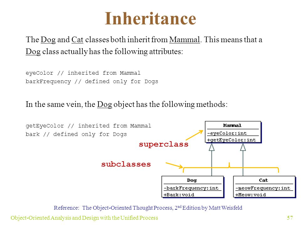 Inheritance The Dog and Cat classes both inherit from Mammal. This means that a Dog class actually has the following attributes: eyeColor // inherited
