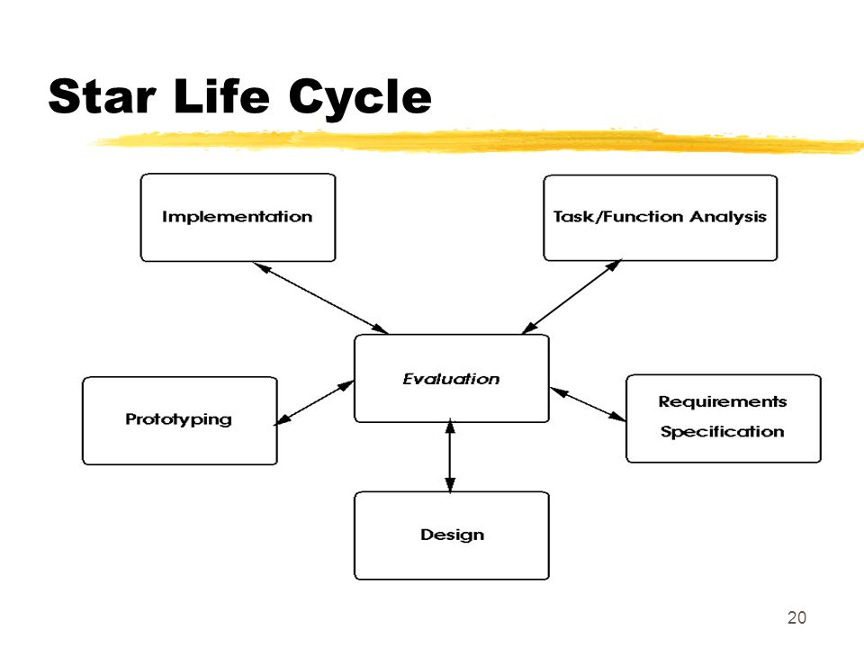 20 Star Life Cycle
