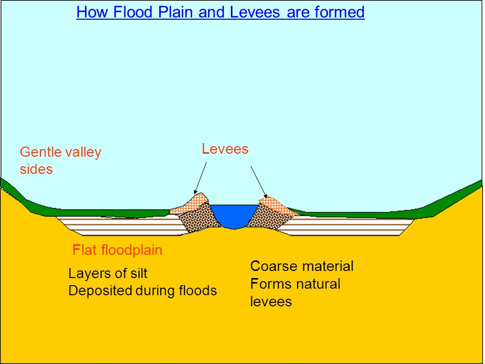Flat floodplain Layers of silt Deposited during floods Coarse material Forms natural levees Gentle valley sides How Flood Plain and Levees are formed Levees