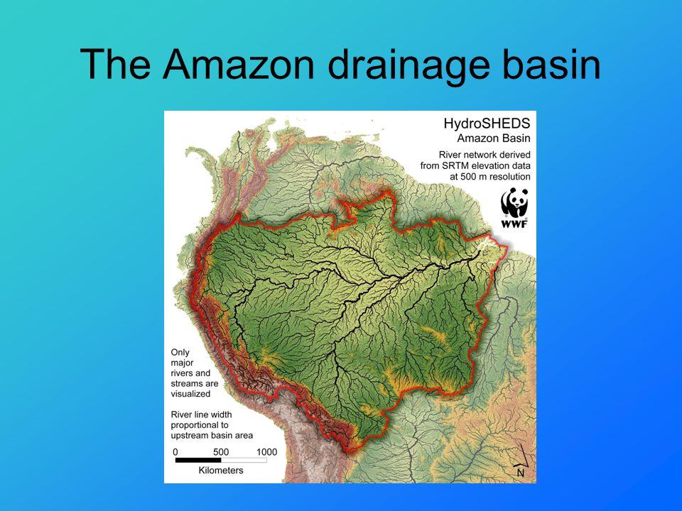 The Amazon drainage basin