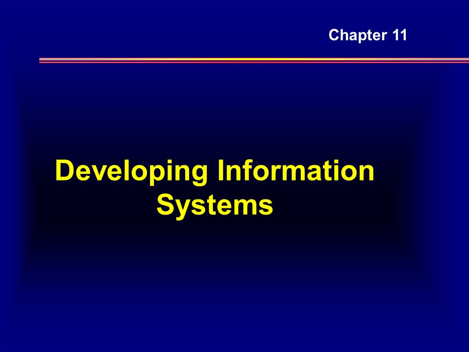 Developing Information Systems Chapter 11