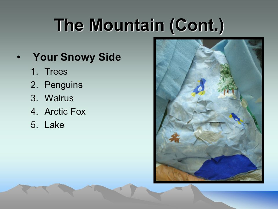 The Mountain (Cont.) Your Snowy Side 1.Trees 2.Penguins 3.Walrus 4.Arctic Fox 5.Lake