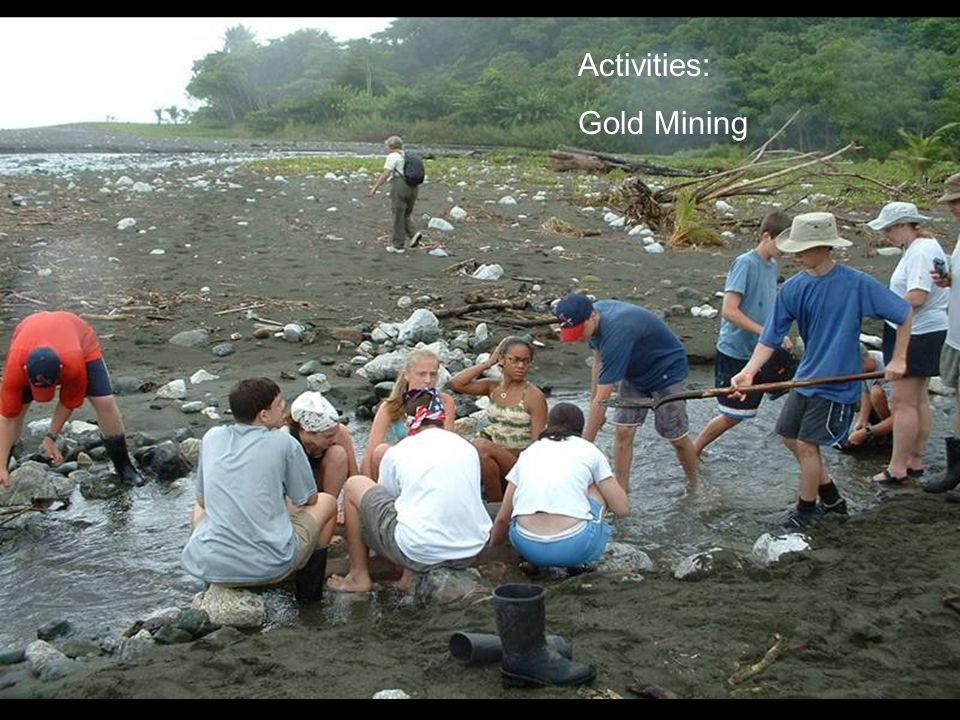 Activities: Gold Mining