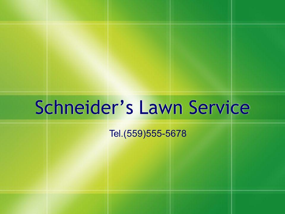Schneider's Lawn Service Tel.(559)555-5678