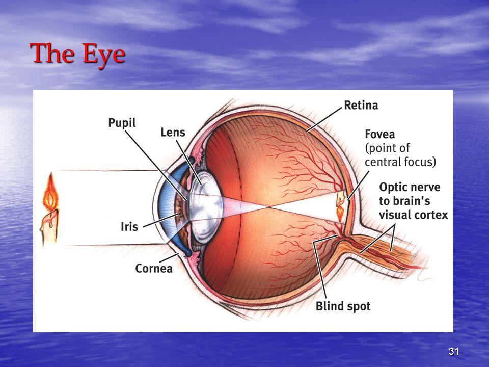 31 The Eye