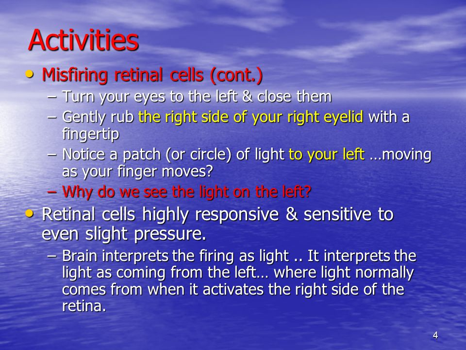 4 Activities Misfiring retinal cells (cont.) Misfiring retinal cells (cont.) –Turn your eyes to the left & close them –Gently rub the right side of your right eyelid with a fingertip –Notice a patch (or circle) of light to your left …moving as your finger moves.