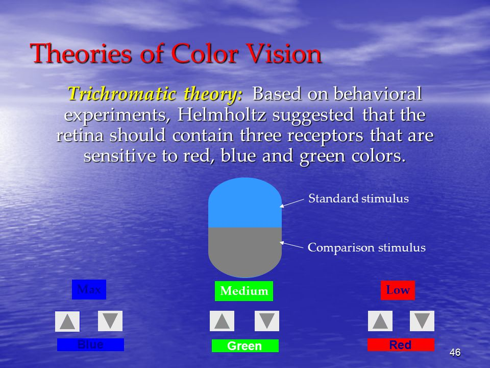 46 Theories of Color Vision Trichromatic theory: Based on behavioral experiments, Helmholtz suggested that the retina should contain three receptors that are sensitive to red, blue and green colors.