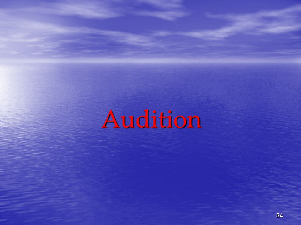 54 Audition