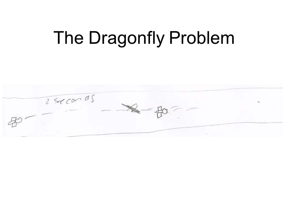 The Dragonfly Problem