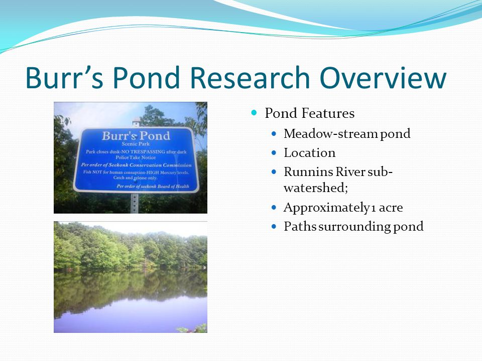 Burr's Pond Research Overview Pond Features Meadow-stream pond Location Runnins River sub- watershed; Approximately 1 acre Paths surrounding pond